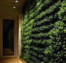 home interior green wall home interiors