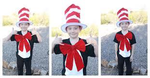 Cat Hat Halloween Costume Cat Hat Costume Desert Chica