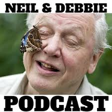 Debbie Meme - neil debbie aka ndebz podcast 152 message from sir david