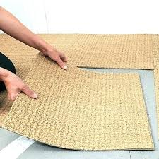 Indoor Outdoor Rug Runner Indoor Outdoor Sisal Rug 9 12 Ntq Me
