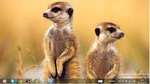 live themes for windows 8 1 download free download windows 8 themes african wildlife theme