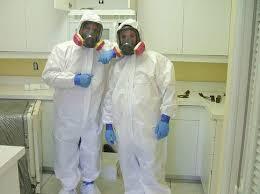 does uv light kill mold can you use a uv l to kill mold brian bland pulse linkedin