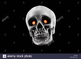 halloween photo background a halloween skull decoration with yellow eyes isolated on a black