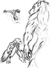 werewolf sketches by vexild on deviantart