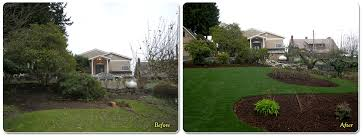 Backyard Renovations Before And After Federal Way Landscaping Design Construction And Services