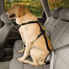 guide dog harness best dog seat belts and car harnesses u2013 reviews and a guide to dog
