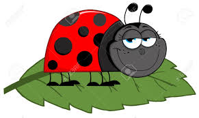 happy cartoon ladybug on a leaf royalty free cliparts vectors
