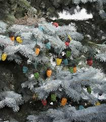 bird seed christmas string lights trim a tree for the birds