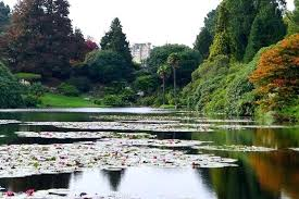 Restaurants Near Botanical Gardens Sheffield Park Garden A Stroll Around Capability Browns Park And