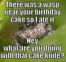 Spider Meme Misunderstood Spider Meme - misunderstood spider meme wasp