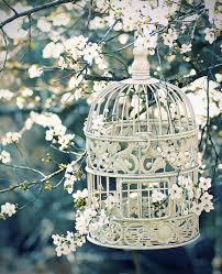 decorating flower birdcage gardens 20 flower birdcage
