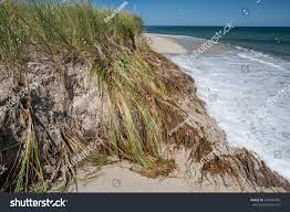 climate change causing sea levels rise stock photo 295663430
