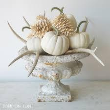 White Pumpkin Decorations Halloween They U0027re Heeeeere Luminas Baby Boos And Other White Pumpkins