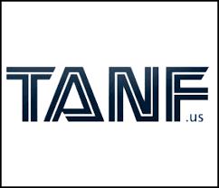 tanf new braunfels food bank