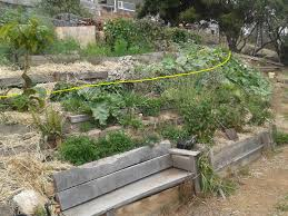urban edible forest gardens good life permaculture