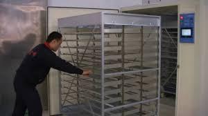 12000 egg incubator for poultry business starter youtube