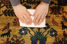 how to clean rugs clean your rugs accidents and remove stains from your carpets dyi