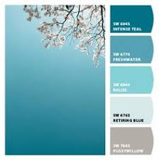 Icy Avalanche Sherwin Williams Quart Size Container Glacier Basin Interior Eggshell Paint Sample