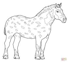percheron horse coloring page free printable coloring pages