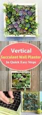 How To Make Vertical Garden Wall - turn plants into art with this diy vertical garden vertical