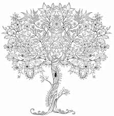 coloring pages for adults tree tree coloring pages for adults adult 1 pinterest arilitv com tree