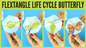 butterfly life cycle paper toy craft flextangle template easy