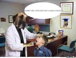 Dog Doctor Meme - doctor dog have a bad news by lowblow meme center