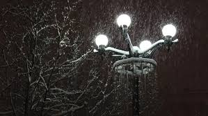 l in snow winter park lights branches of trees and