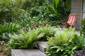 tropical garden ideas brisbane interior design