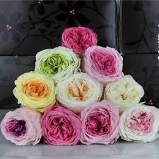 preserving flowers preserving flowers online preserving fresh flowers for sale