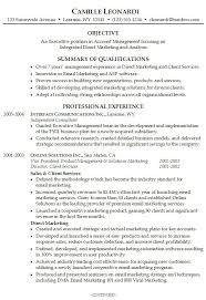 Direct Support Staff Resume Professional Summary On Resume Examples Resume Example And Free