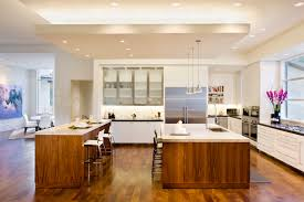 Kitchen Drop Ceiling Lighting Blanco House Contemporary Kitchen By Larue Architects