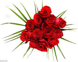 How Much Is A Dozen Roses Lidl U0027s Budget Bunch Of A Dozen Roses Goes On Sale Ahead Of