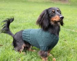 Mini Dachshund Halloween Costumes Knitting Pattern Dachshund Unicorn Hood Dog Hat Dogs Pet