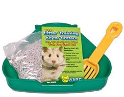 Best Bedding For Rats Litter Box Training How To Potty Train Your Rat Rat Whisperer