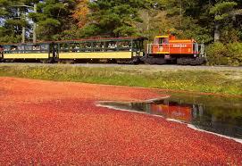 edaville railroad in carver ma great scenery u0026 wonderful