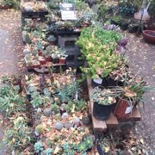 redwood barn nursery 14 photos u0026 16 reviews nurseries