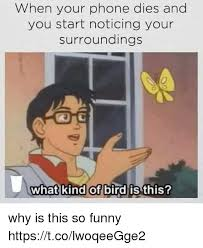 Funny Phone Memes - when your phone dies and you start noticing your surroundings 0 what