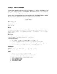 Skills Qualifications Resume Examples by Download Sample Server Resume Haadyaooverbayresort Com