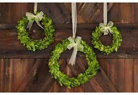 boxwood wreaths preserved boxwood wreath from décor steals