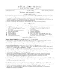Resume Samples For It Professionals Experienced Professional Resume Samples It Professionals