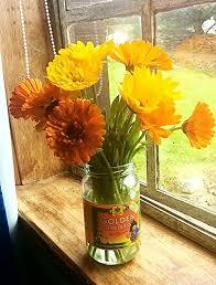 Calendula Flowers Growing Calendula For Your Cut Flower Patch U2013 Higgledy Garden