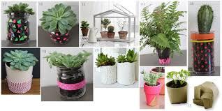 plante cuisine decoration déco déco 10 astuces green pour votre studio l etudiant trendy