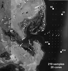 the carbonate evaporite lagoon of al dakhirah qatar an example