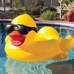 Image result for giant duck pool float