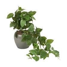 Good Desk Plants Artificial Plants Artificial Flowers Kmart