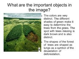 deforestation by m mcdaniel what are the important objects in