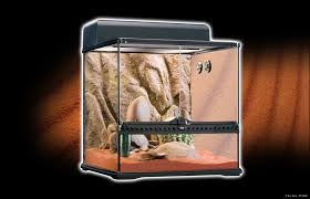 exo terra habitat kit desert starter kit