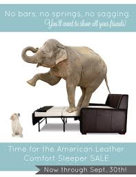 Sleeper Sofa Sale American Leather Sleeper Sofa Sale Radiovannes