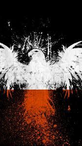 screenheaven eagle art poland flag high quality background